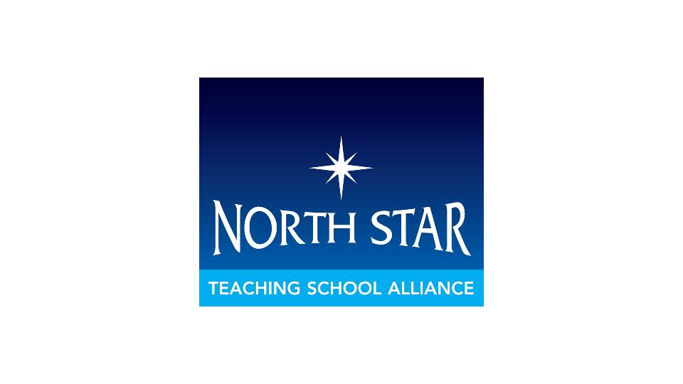 North Star Logo_Low